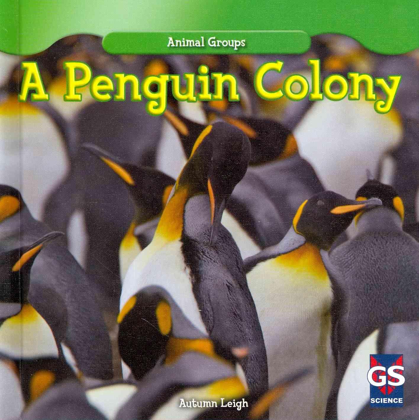 A Penguin Colony By Leigh, Autumn